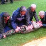 Exmoor outdoor first aid